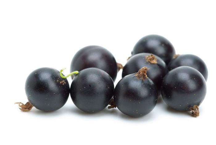 que-planter-en-septembre-fruit-cassis