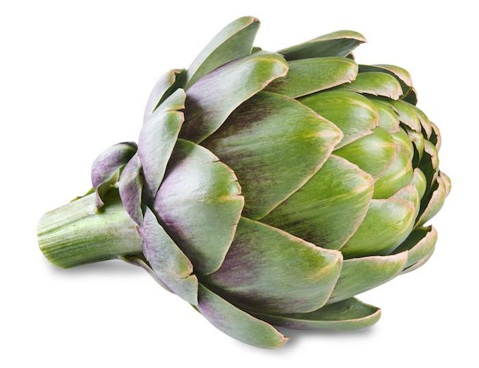 que-planter-en-septembre-legume-artichaut