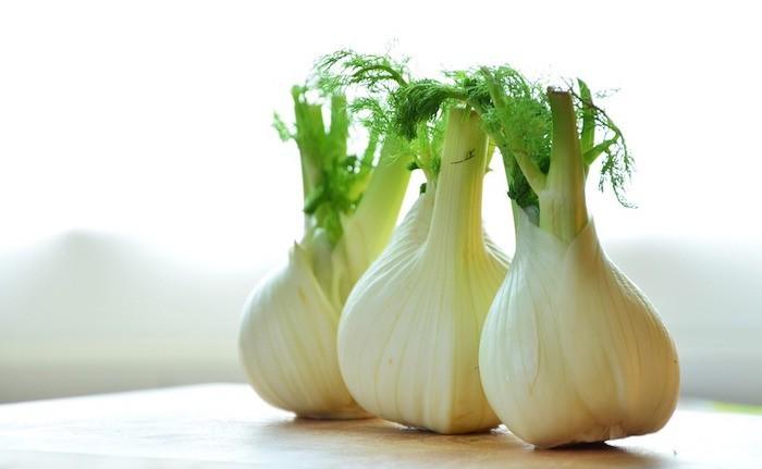 que-planter-en-septembre-legume-fenouils