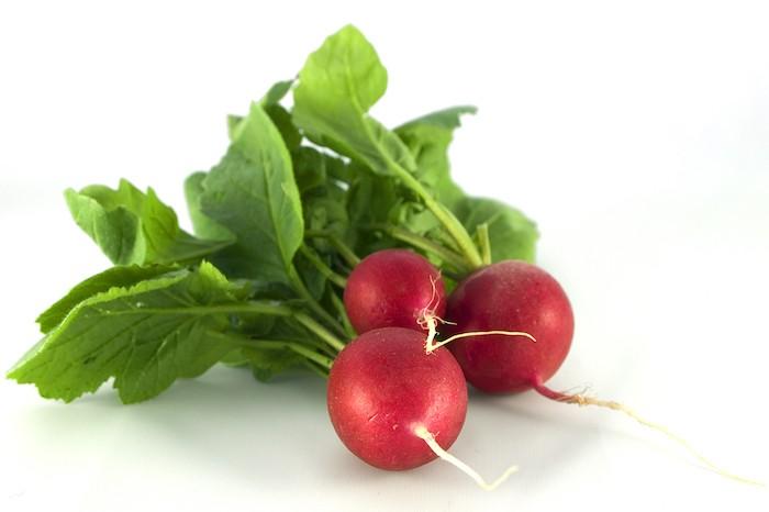 que-planter-en-septembre-legume-radis