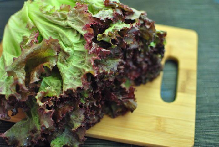 quoi-planter-en-septembre-legume-laitue-feuille-de-chêne
