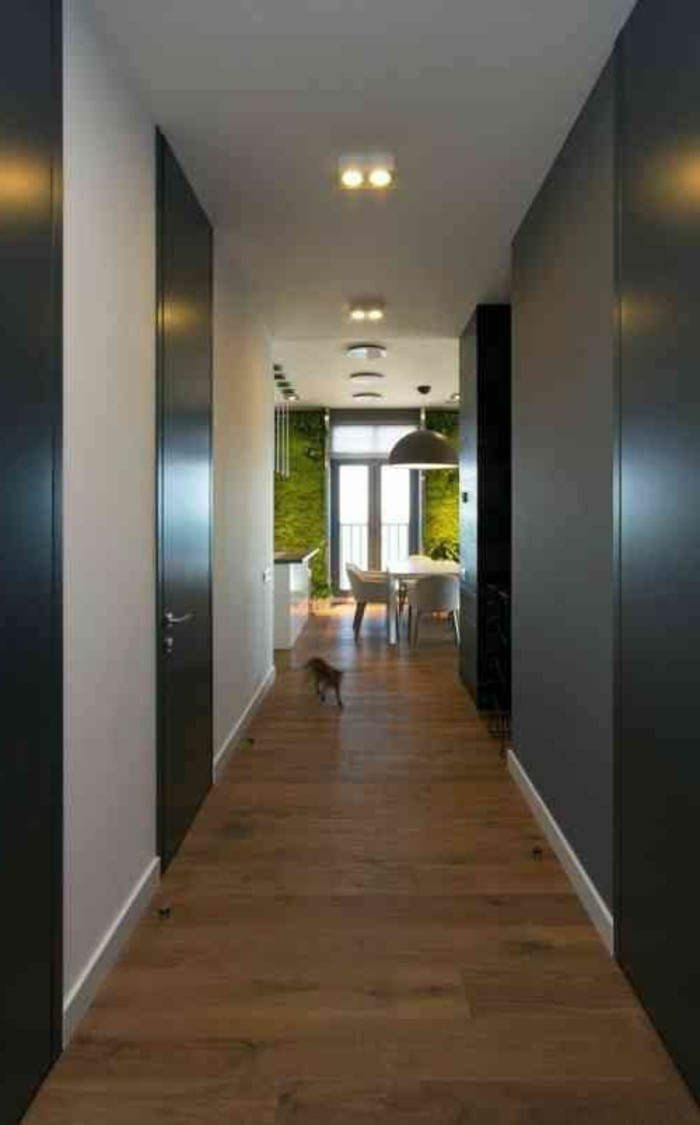 Idée Peinture Couloir Et Entrée décoration feng shui - plus de 50 photos pour vous!