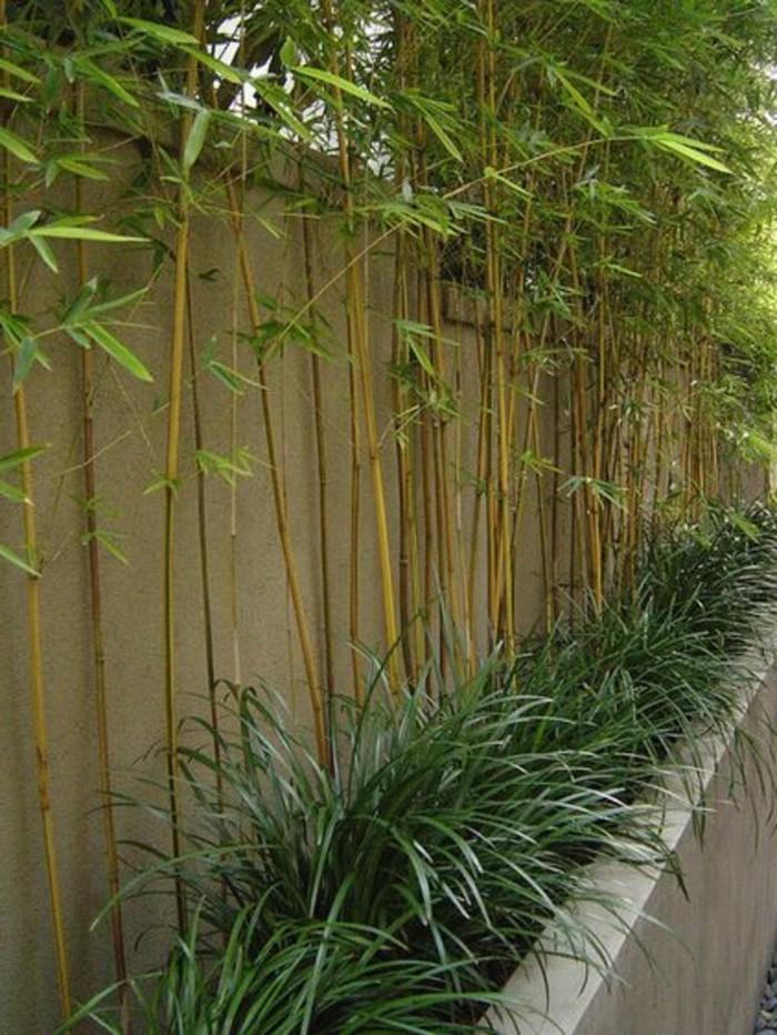 29-decoration-couloir-un-mur-en-bois
