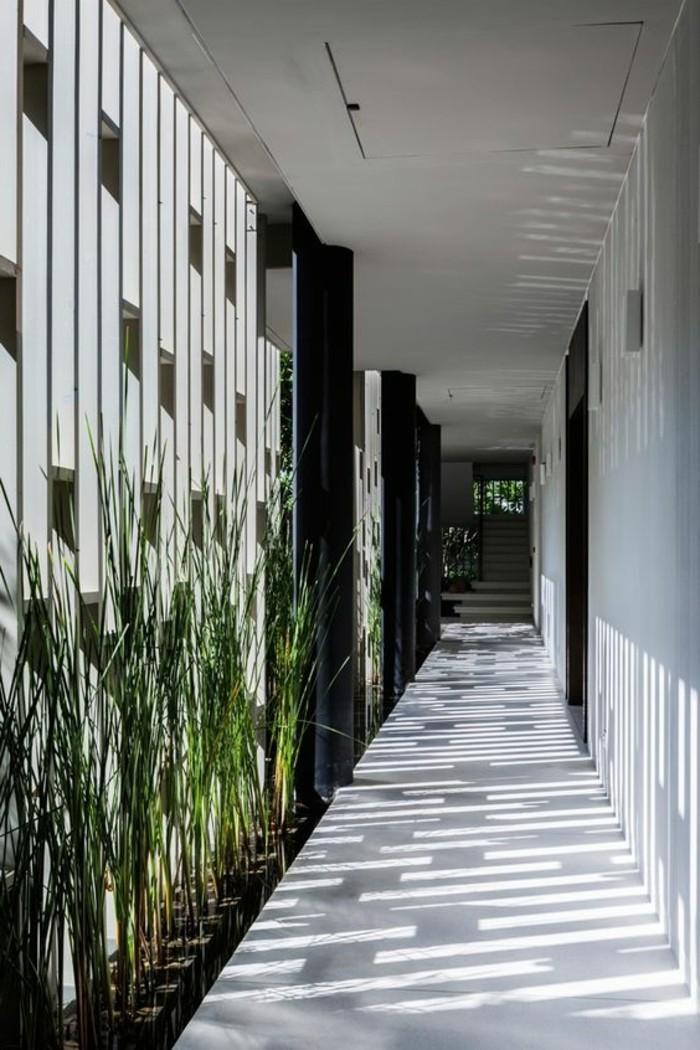32-deco-de-couloir-des-plantes-vertes-sont-appuyes-sur-le-mur
