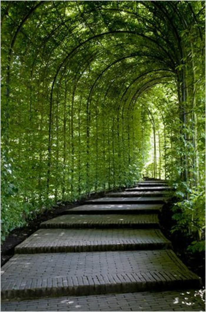 37-idee-deco-couiloir-un-tunel-de-verdure