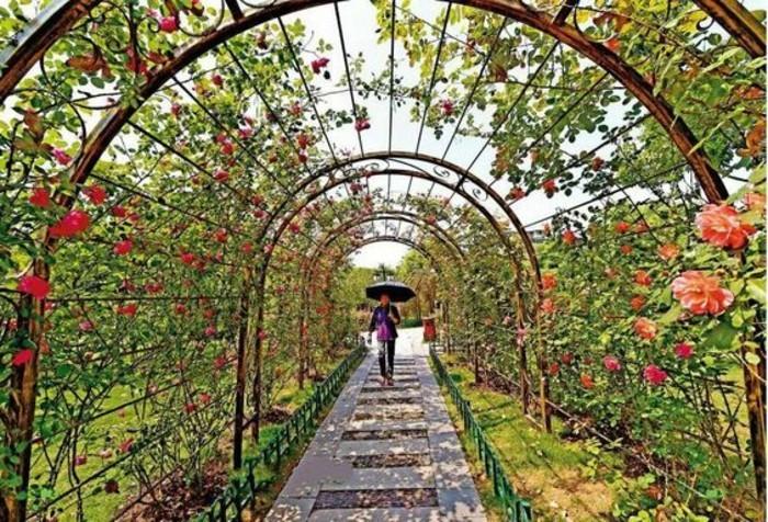 45-decoration-couloir-fleurs-rouges