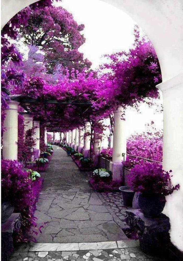 52-couloir-deco-des-fleurs-lilas