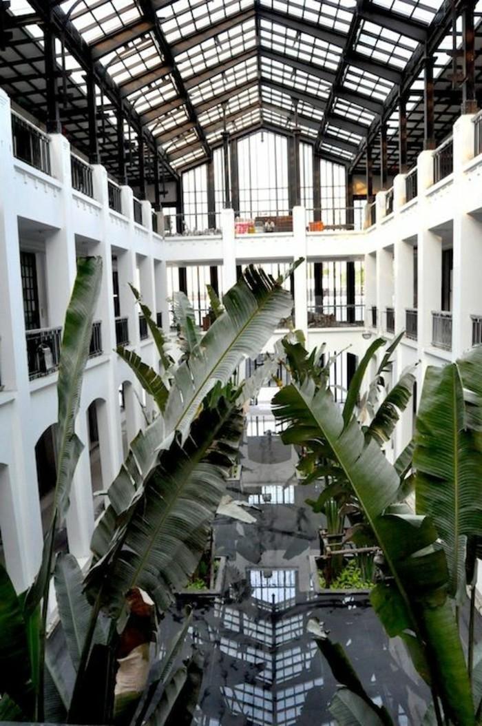 54-couloir-deco-de-grandes-plantes-vertes
