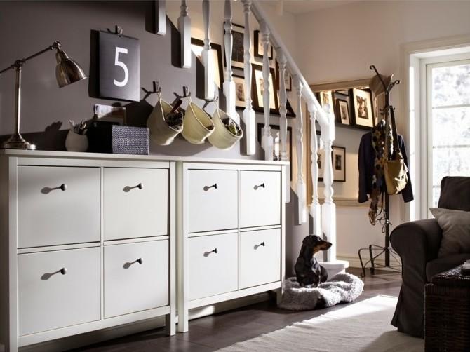 58-placard-a-chaussure-un-chien-noir-et-un-fauteuil-noir