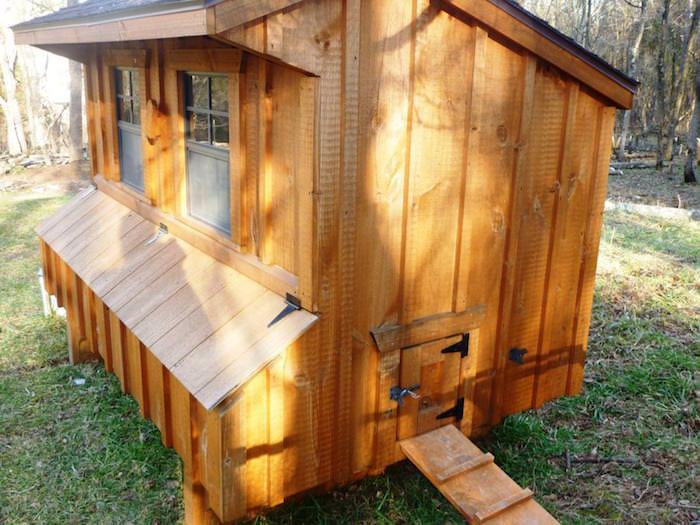poulailler design en bois maisonnette-poules