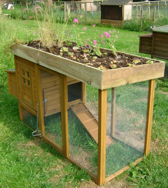 poulailler-jardinière-jardin-en-bois-design