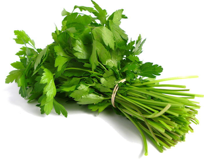 Plante aromatique mettez du go t dans votre int rieur for Basilic culture interieur