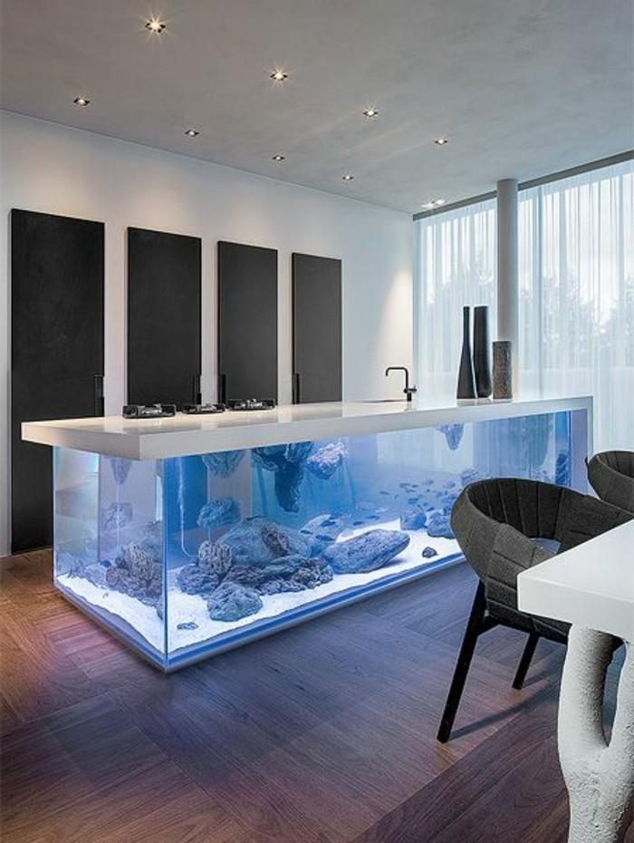 cuisine-equipee-ilot-aquarium-vaste-salle