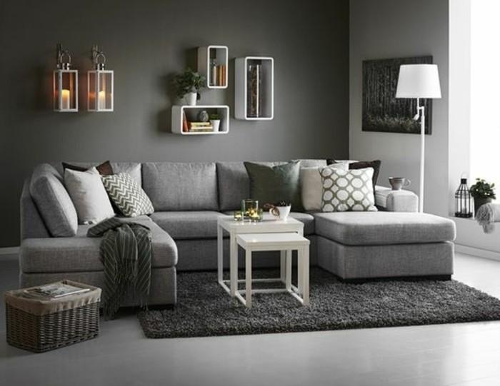 deco-salon-moderne-mur-salon-gris-fonce-tapis-couleur-fonce-et-canape-gris-clair-ambiance-design-contemporaine