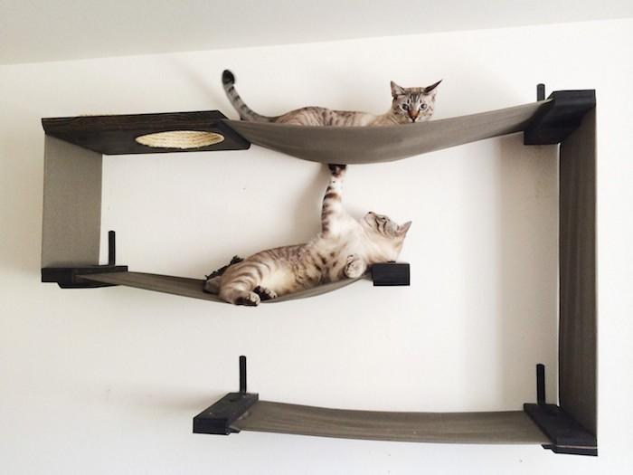 etagere-pour-chat-murale-hamac