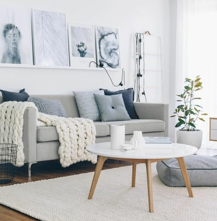 formidable salon gris et blanc inspiration scandinave paquet - Salon Gris Scandinave