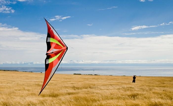 grand-cerf-volant-multicolore-idee-pour-fabriquer-un-cerf-volant-execptionnel