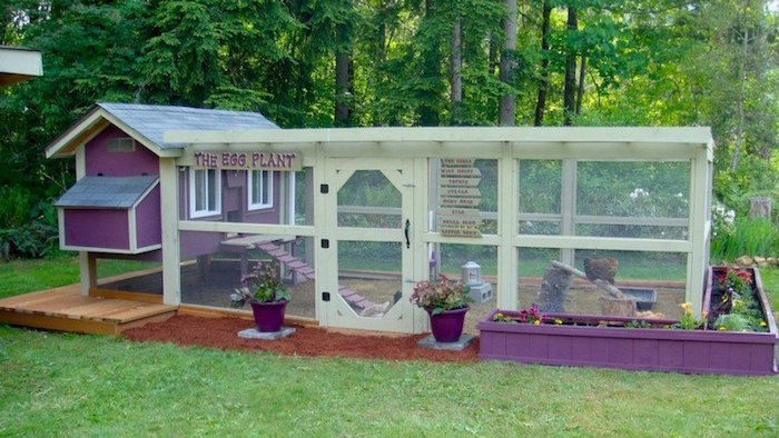 grand-poulailler-jardin-original-tout-confort