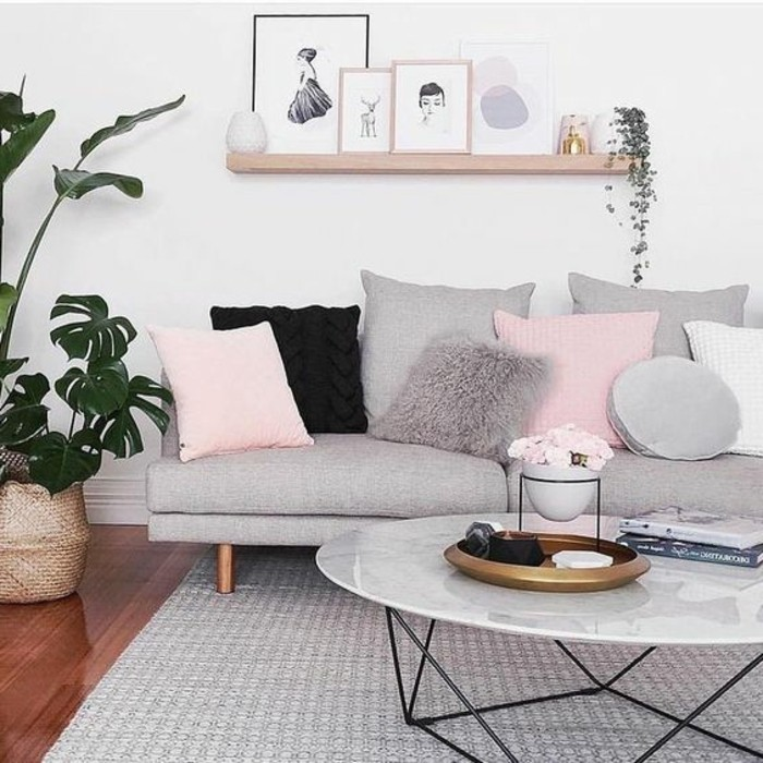 idee-deco-salon-tres-douce-et-feminine-couelur-peinture-salon-blanc-et-canape-et-tapis-gris-coussins-rose-qui-ajoutent-une-touche-unique