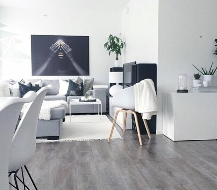 Idee deco salon gris et blanc for Exemple de deco salon