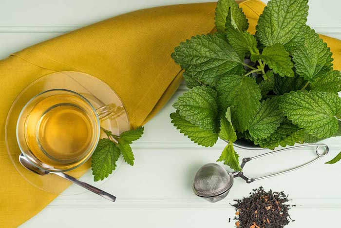 infusion-melisse-melissa-officinalis-herbe-medicinale