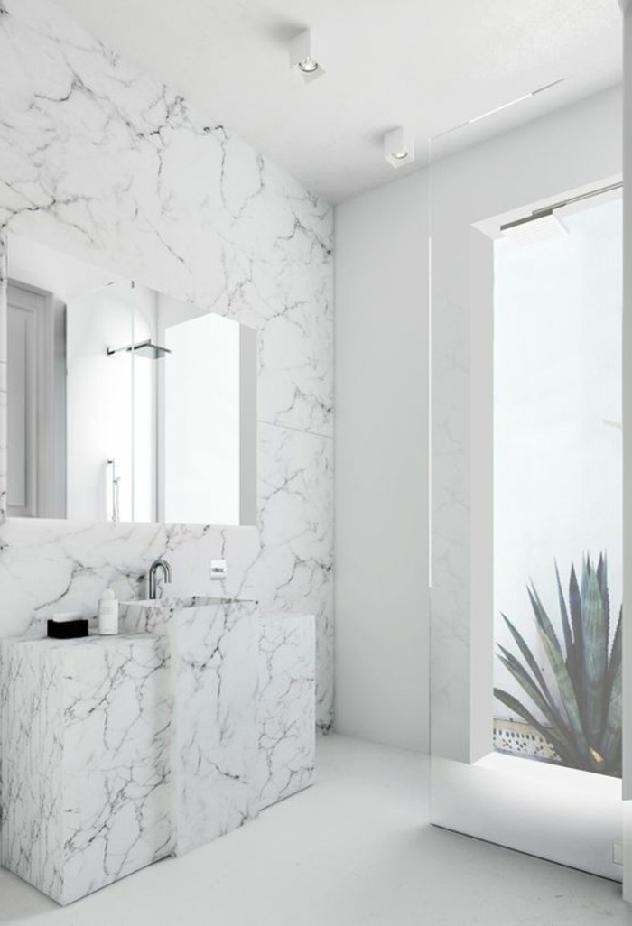 Le lavabo colonne en 81 photos inspirantes for Salle bain marbre