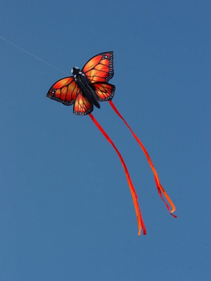 magnifique-idee-pour-un-cerf-volant-en-forme-de-papillon-jolie-suggestion-comment-fabriquer-un-cerf-volant