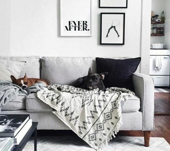 magnifique-suggestion-deco-salon-gris-et-blanc-canape-gris-peinture-murale-blanche