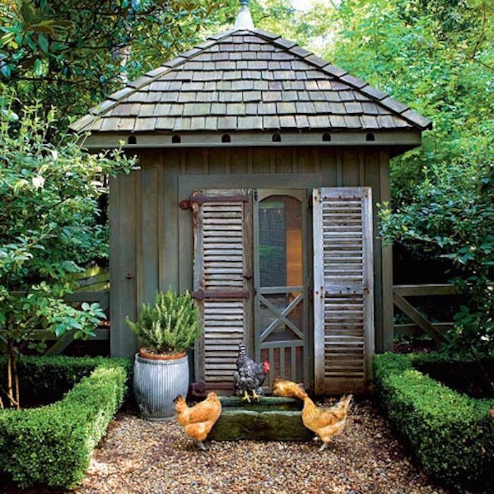 maisonnette-a-poules-pour-jardin-design