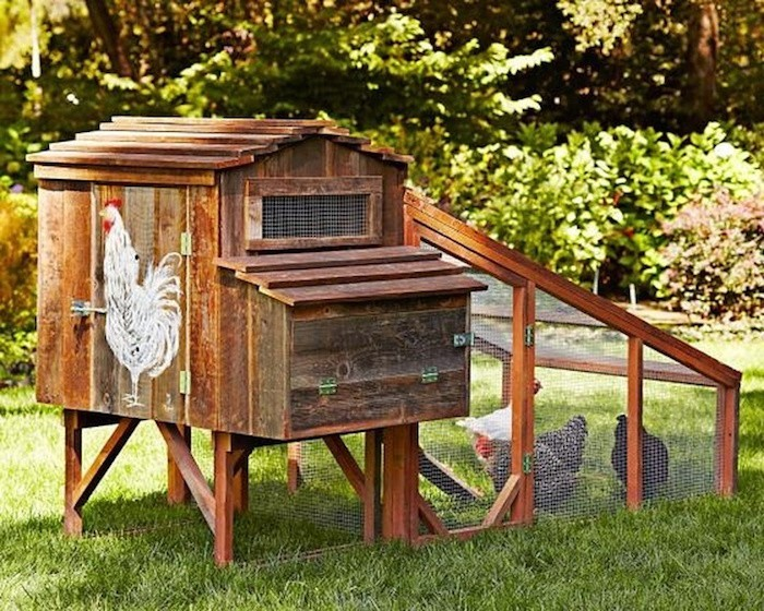 petit-poulailler-bois-rustique-decoration-poules