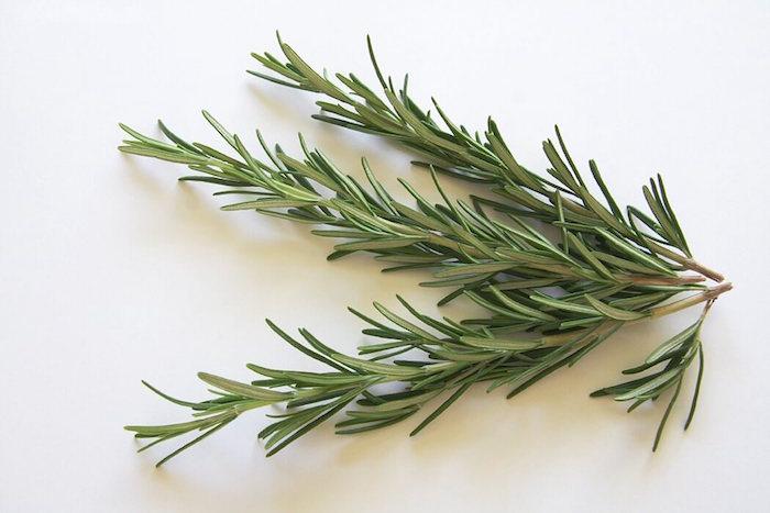 planter du thym comme antiseptique pour grillades et plantes aromates