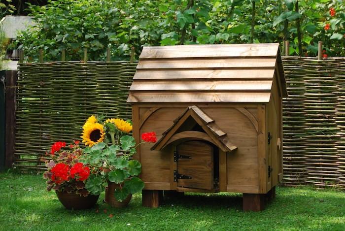 poulailler-design-bois-deco-jardin