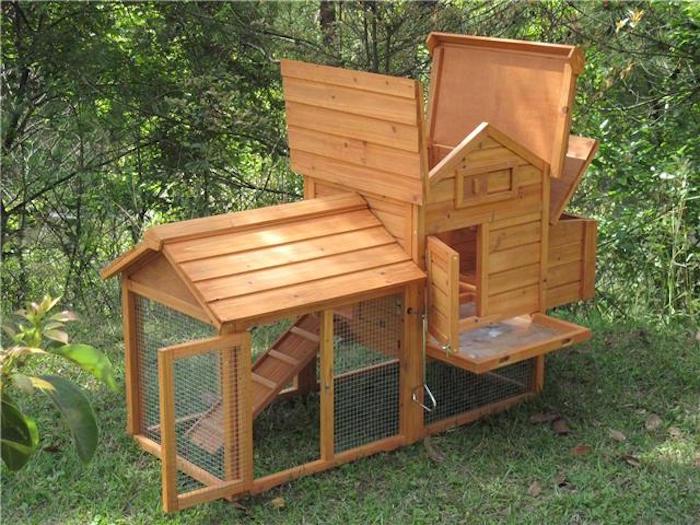 poulailler-design-maison-pour-poules-jardin-en-bois