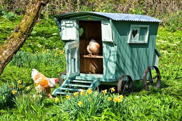 poulailler-original-caravane-jardin