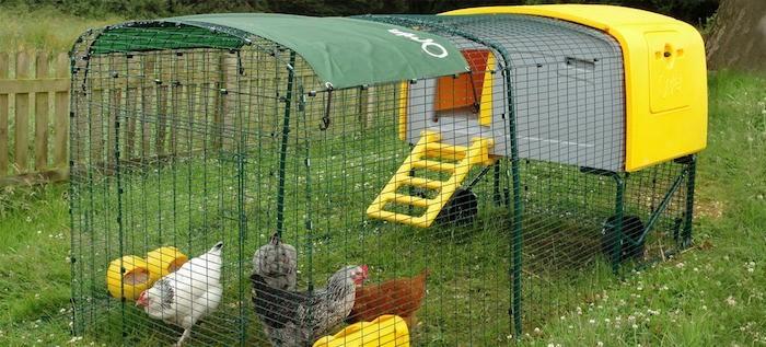 poulailler-original-design-cabane-plastique-poules