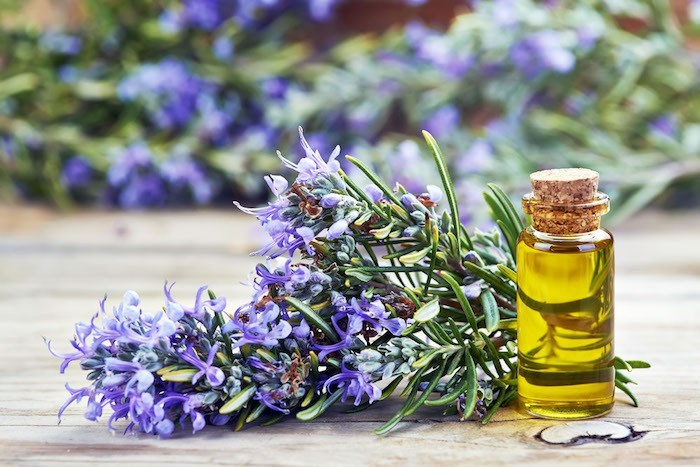 romarin-huile-aromates-cheveux-plante-aromatique