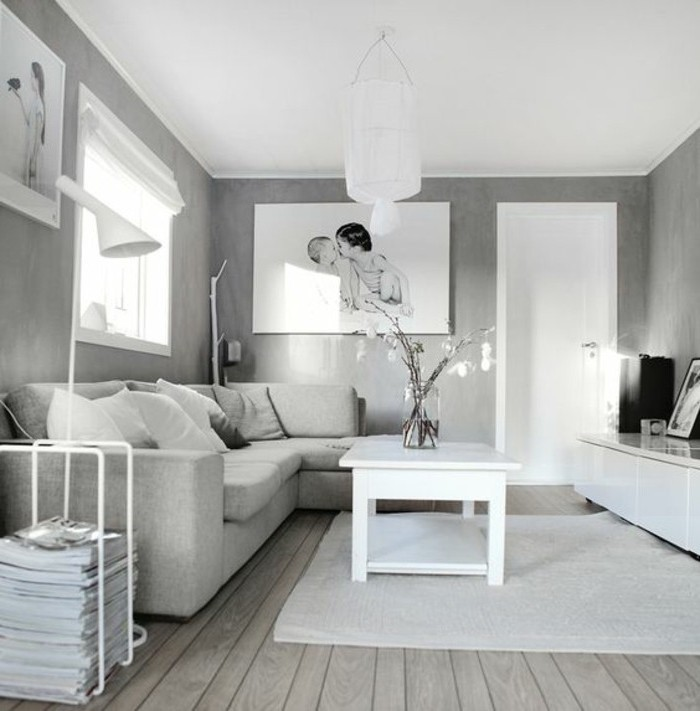Un salon en gris et blanc c 39 est chic voil 82 photos qui for Deco simple salon