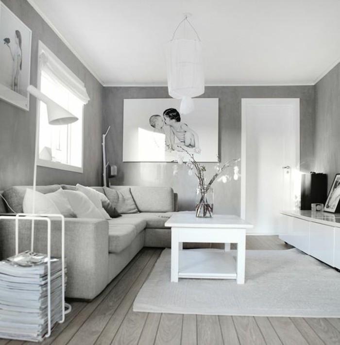 salon-en-gris-et-blanc-style-graphique-sensation-paisible-amenagement-salon-tres-simple-et-esthetique