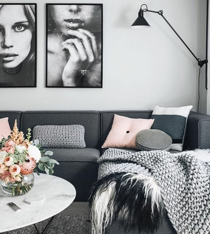 salon-en-gris-et-blanc-tres-esthetique-canape-couleur-gris-anthracite-et-tapis-couleur-gris-clair-peinture-murale-blanche-quelques-accents-roses-et-belle-deco-murale