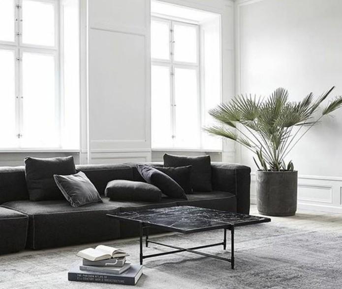 salon-gris-et-blanc-canape-couleur-anthracite-couleur-peinture-salon-blanc-suggestion-magnifique