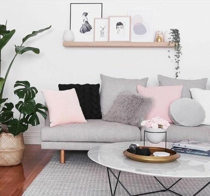 sublime-idee-deco-salon-gris-et-blanc-couleur-peinture-salon-blanc-canape-gris-tapis-gris-accents-roses-elegance-et-douceur
