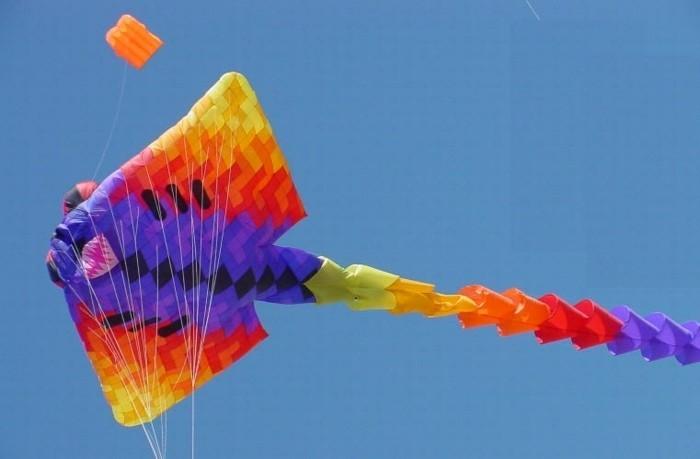 un-geant-modele-de-cerf-volant-suggestion-comment-faire-unserf-volant-multicolore