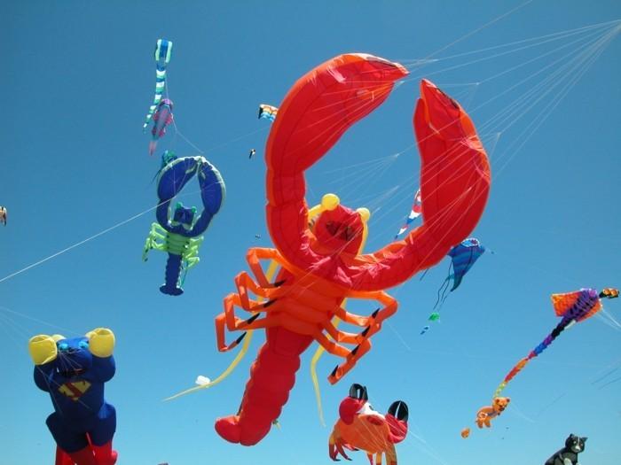 une-autre-joli-modele-cerfs-volantes-en-forme-de-crabes-festival-des-cerfs-volants-comment-fabriquer-un-cerf-volant