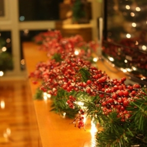 Trouvez la magie de la guirlande lumineuse de Noël!
