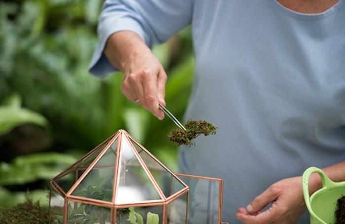 ajouter-de-la-mousse-comme-decoration-idee-comment-creer-un-jardin-miniature