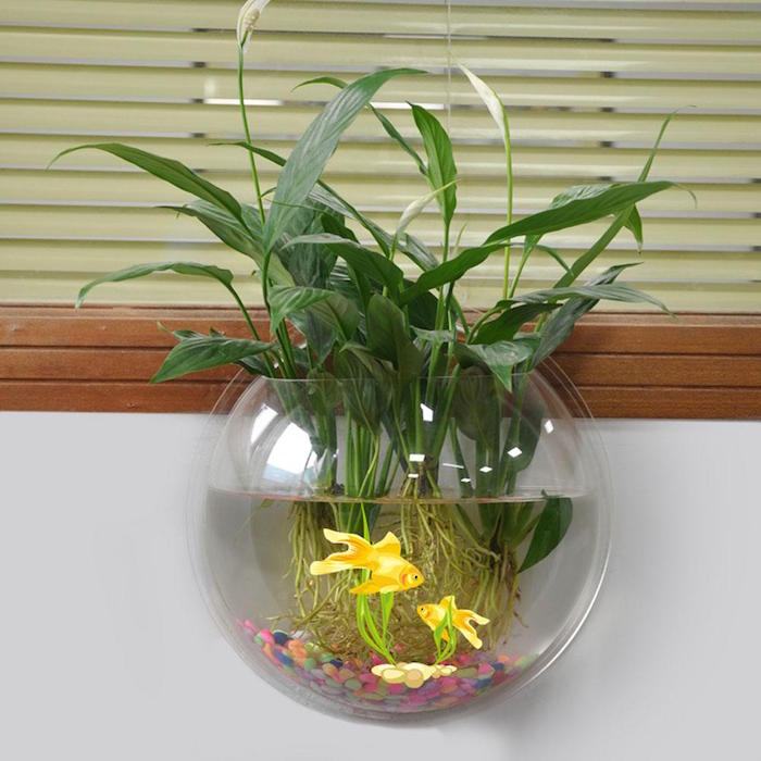 plante aquatique pour vase. Black Bedroom Furniture Sets. Home Design Ideas