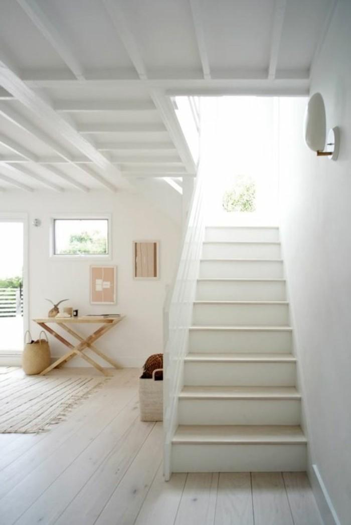 couloir-eclaire-sol-en-parquet-clair-escalier-d-interieur-tapis-clair-idee-amenagement