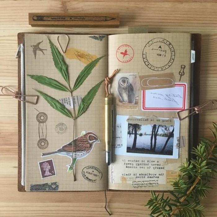 exemple-de-carnet-de-voyage-fleur-sechee-dessin-doiseau
