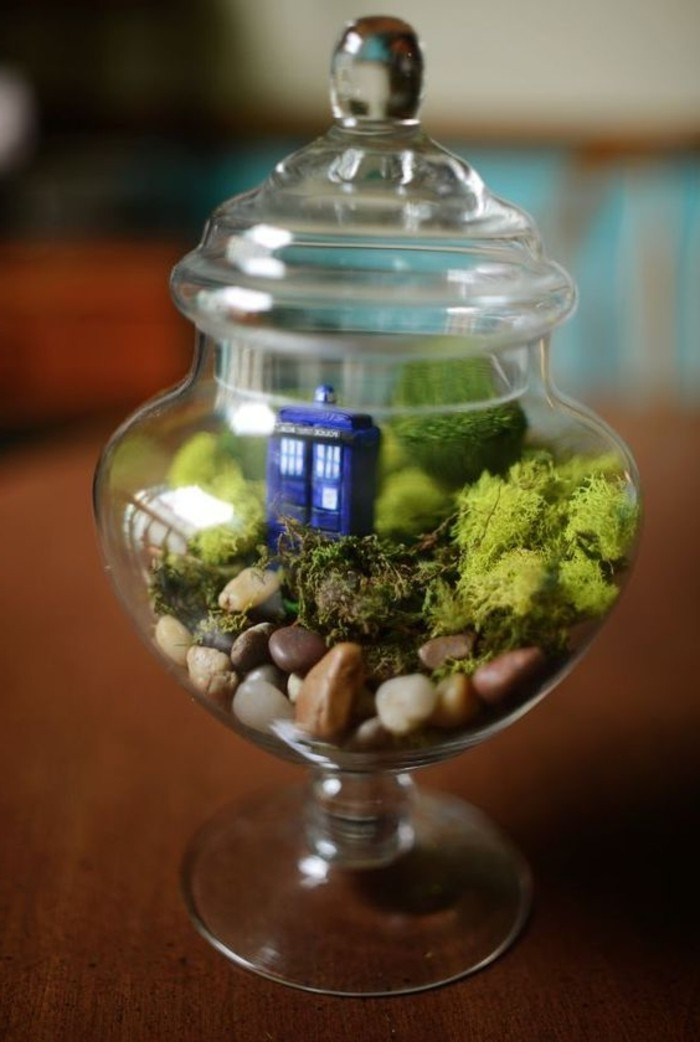 fabriquer-un-terrarium-dans-un-pot-a-bonbons-idee-tres-sympa