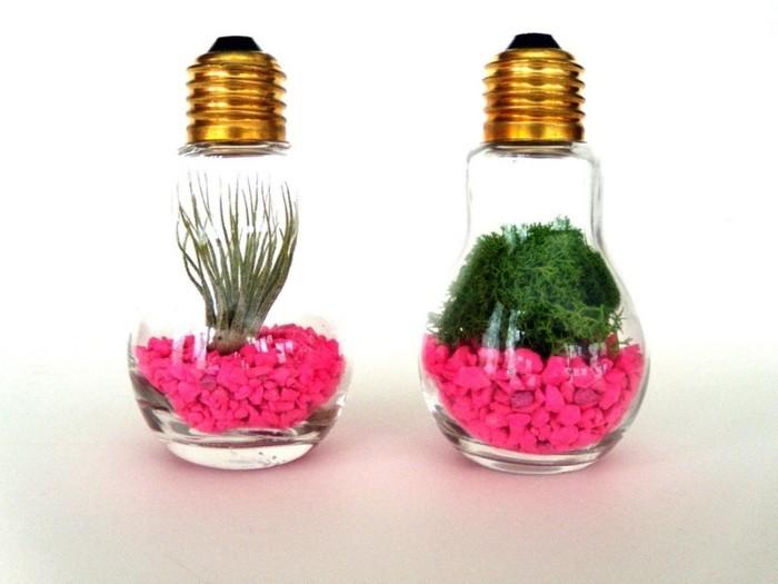 ampoule electrique trasnfromée en terrarium sympa, idée de terrarium ...
